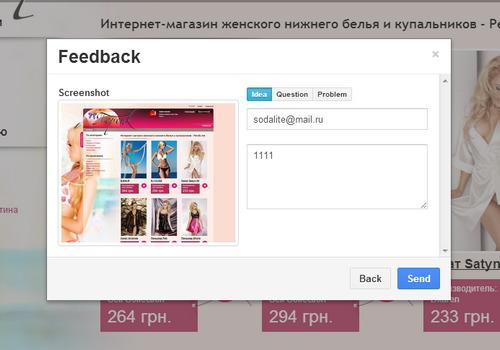 Feedback screenshot form