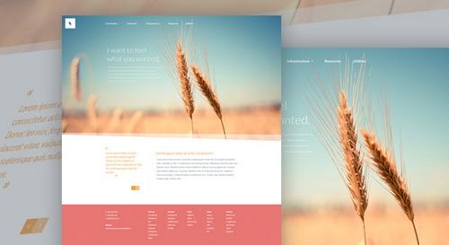 Organic-PSD-Web-Template-Main