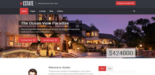 Premium Real Estate Listing Theme