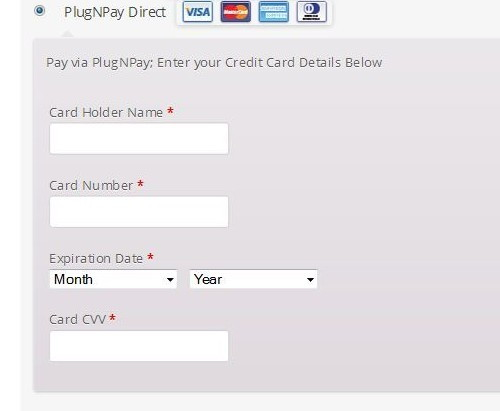 plugnplay payment