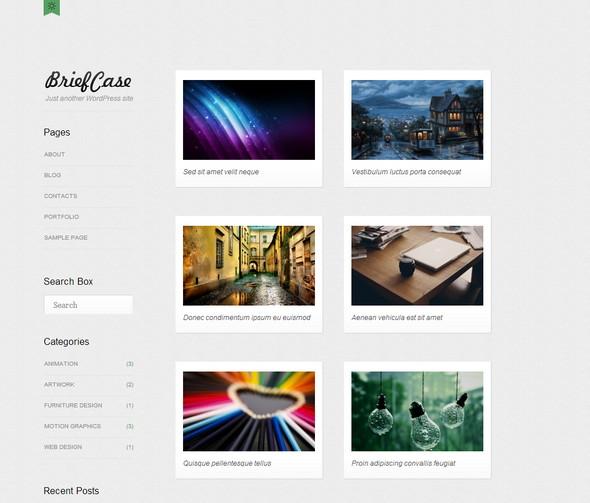 Briefcase portfolio based free WordPress theme