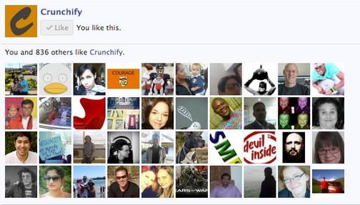 facebook member widget