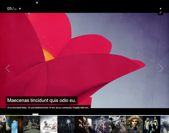 FlowAway Fullscreen Theme