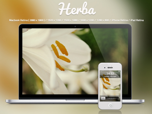 herba hd wallpaper