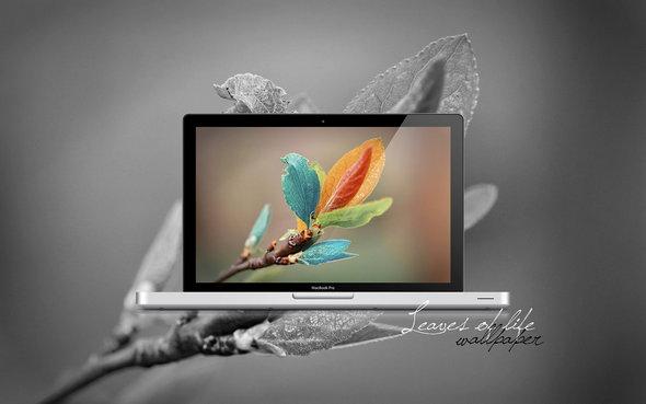 leaves_of_life_wallpaper