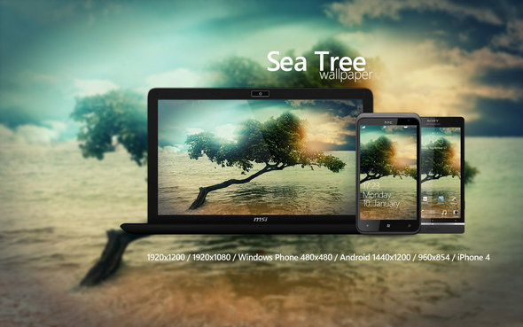 sea_tree_wallpaper