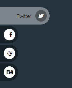 rolling css social button