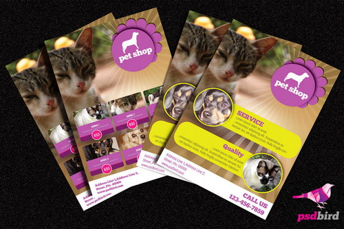 Pets Shop Brochure PSD