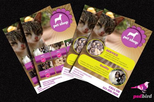 Brochure du magasin d'animaux de compagnie PSD