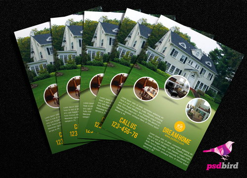 Real Estate Brochure PSD