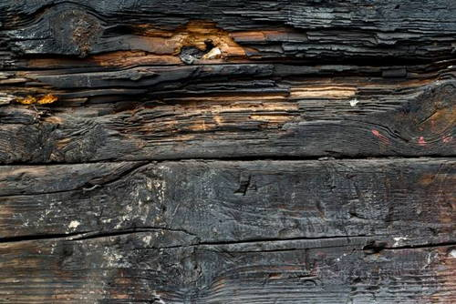 burned-wood