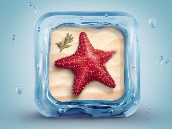 3d-starfish-icon