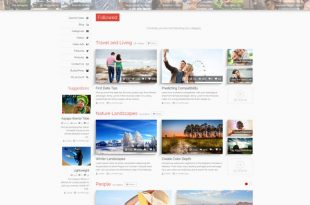 best WordPress video themes 2015