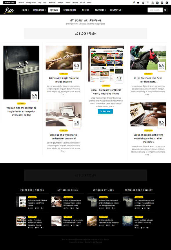 Bou Masonry Review Magazine Blog WordPress Theme