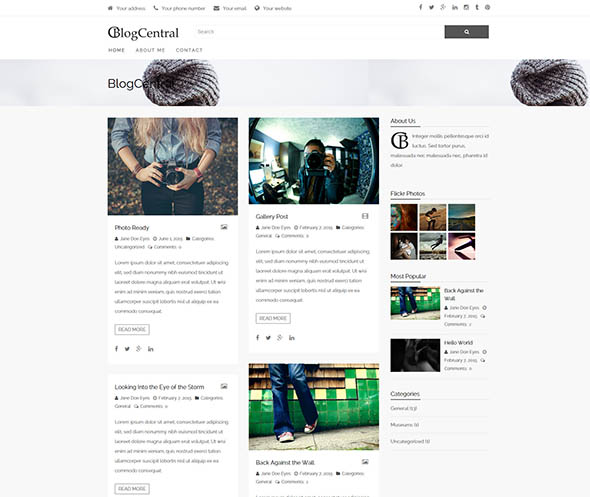 responsive wordpress theme for blogs