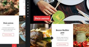 recepter theme - for restaurants, blogs, free wordpress themes