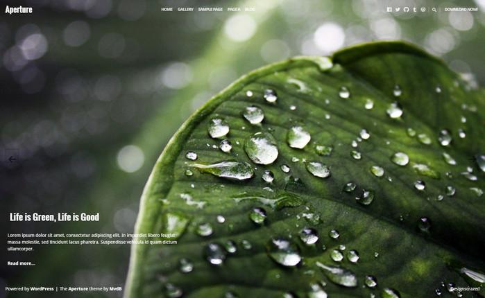 aperture- fullscreen photography theme for free