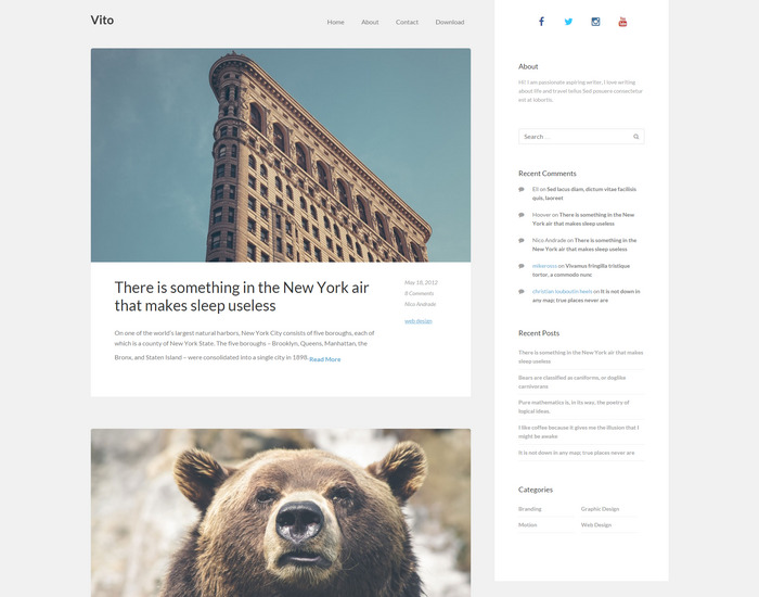 Vito - Classic blog theme for wordpress users