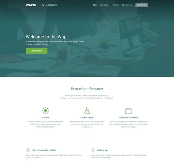 wapik Free PSD onepage website template