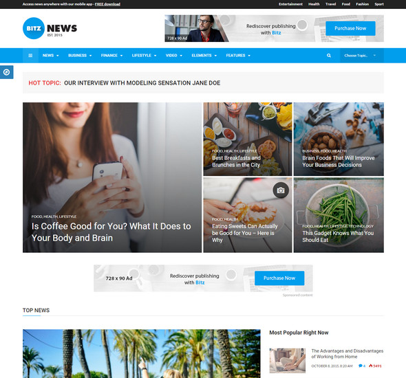 Bitz - News - Publishing Theme
