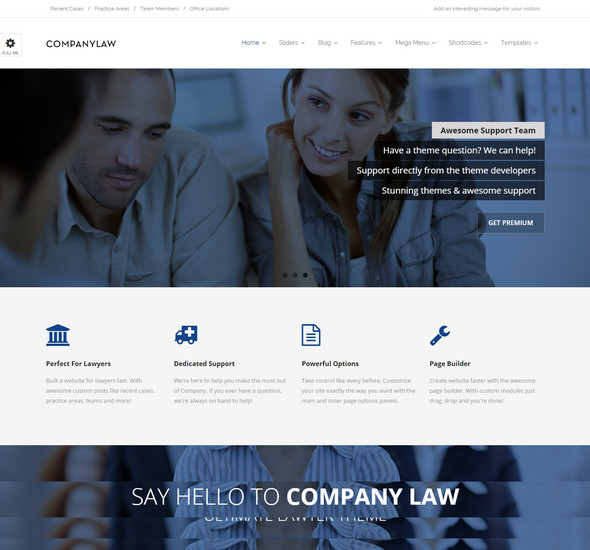 Company Law - WordPress Theme