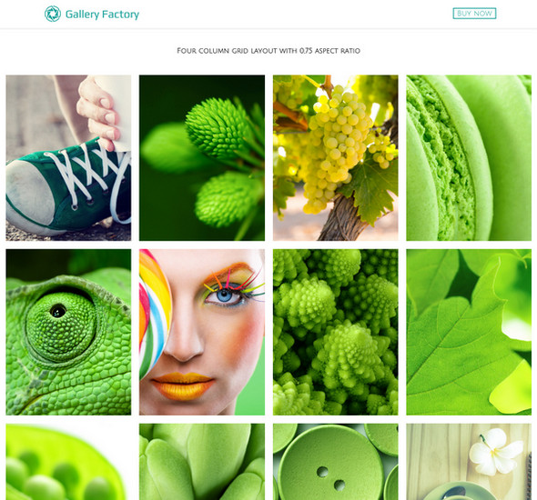 Gallery Factory - WordPress Plugin