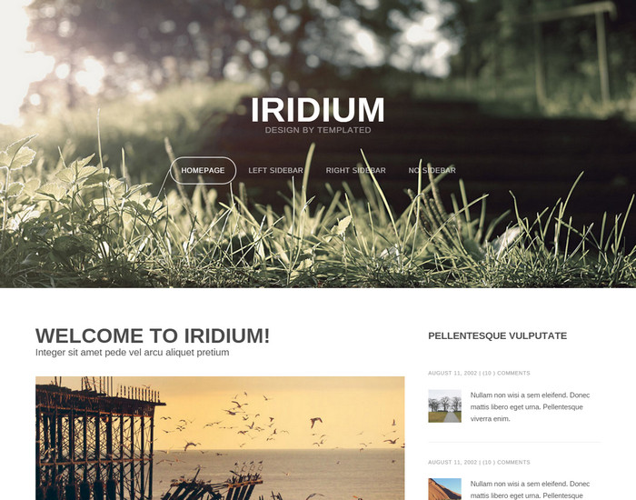 Iridium - Blog Template