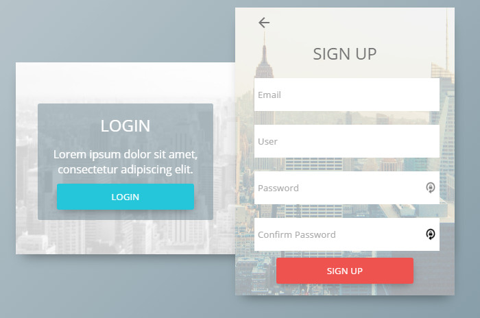 Sign Up Form Concept