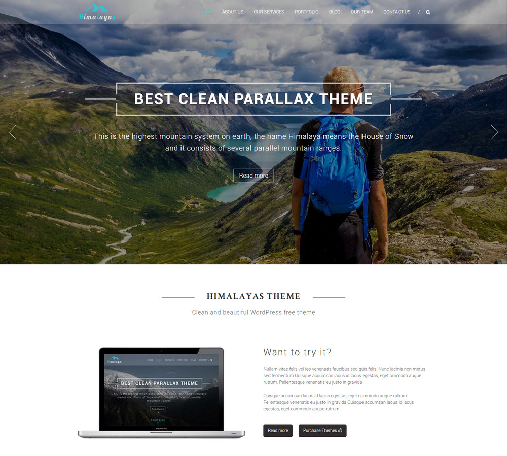 beautiful WordPress free theme