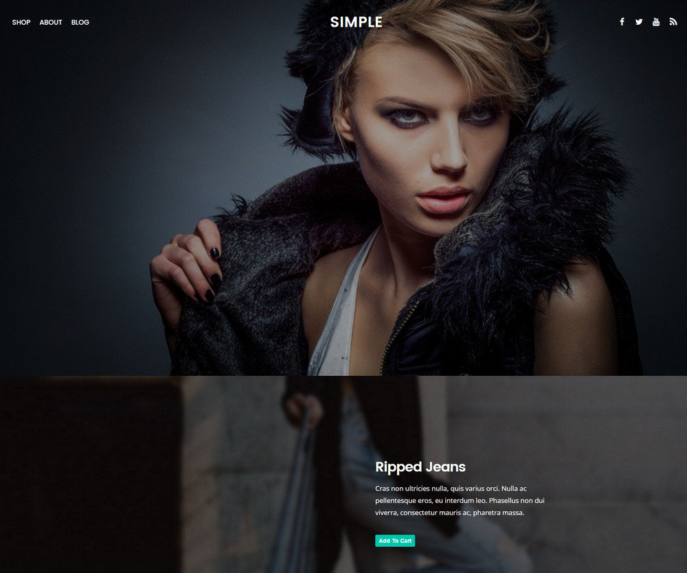 simple free shopping wp ecommerce theme
