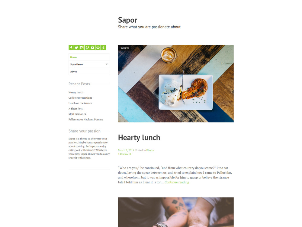 Sapor - passion free wp theme