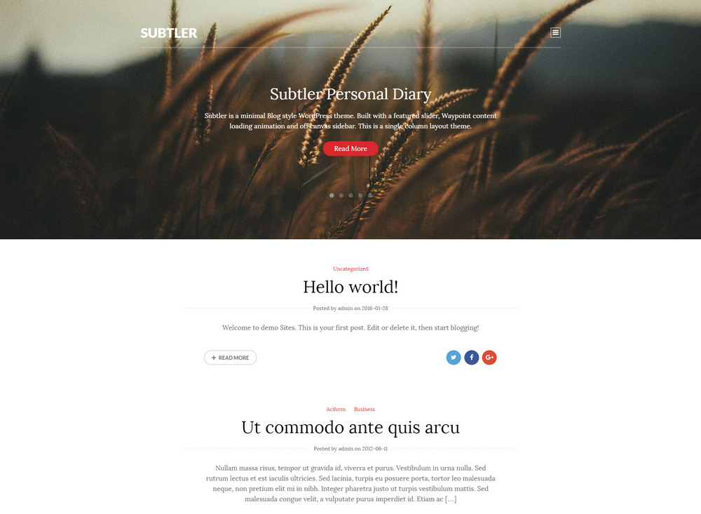 free minimal Blog style WordPress theme