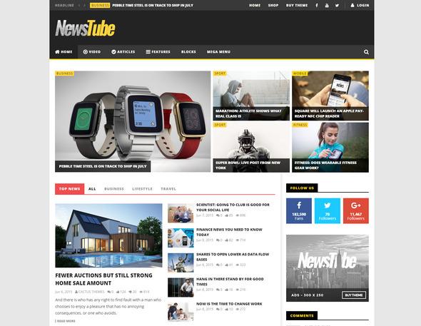 NewsTube - wordpress Magazine Blog & Video