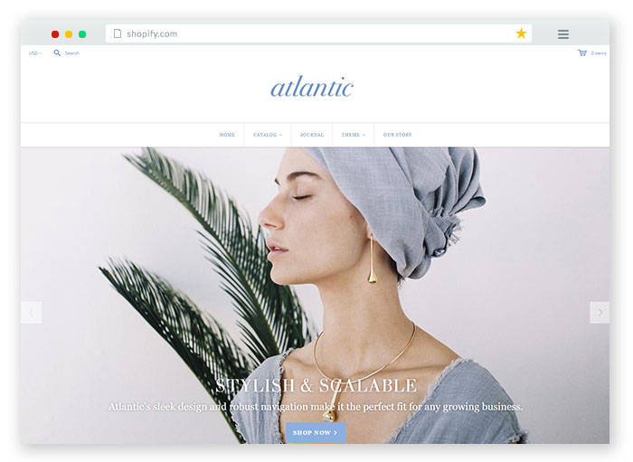 Jewelry Fashion Ecommerce Website Template