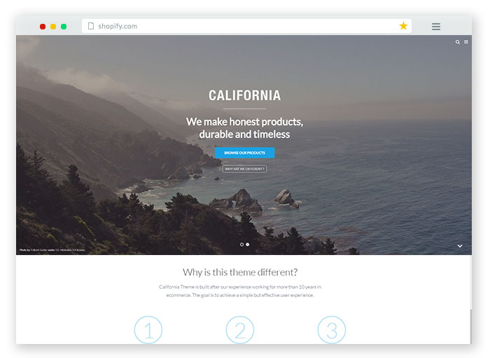california-brand-store-theme