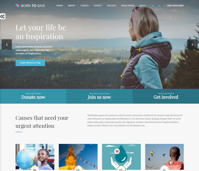 Born To Give Charity WordPress Theme