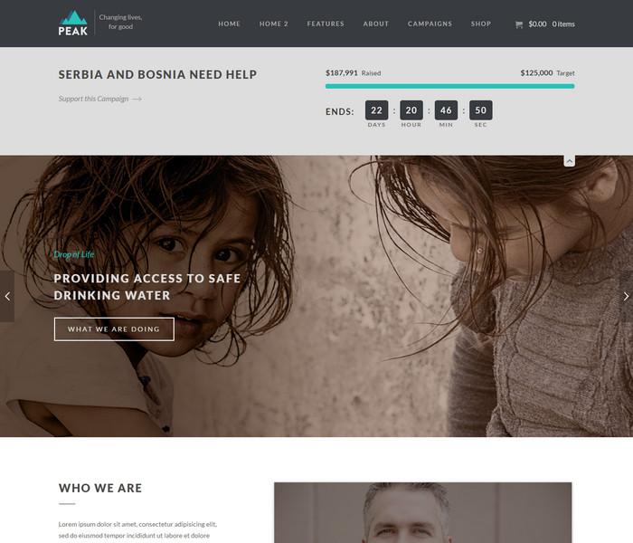 Peak Charity WordPress Theme