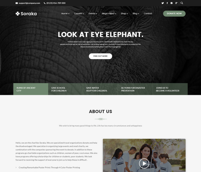 Soraka Non Profit WordPress Theme