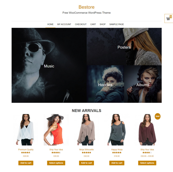 Top online store theme