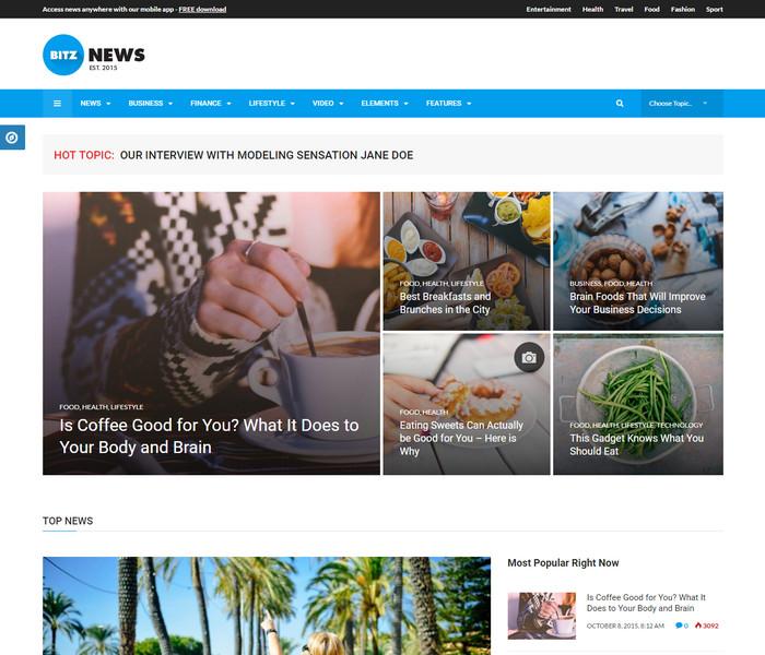 Bitz News WordPress Theme