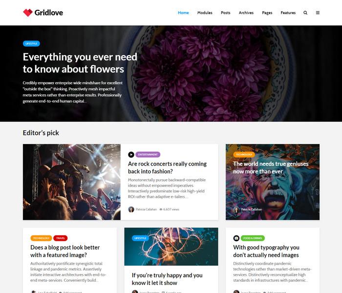 Grid Love WordPress Theme for news websites
