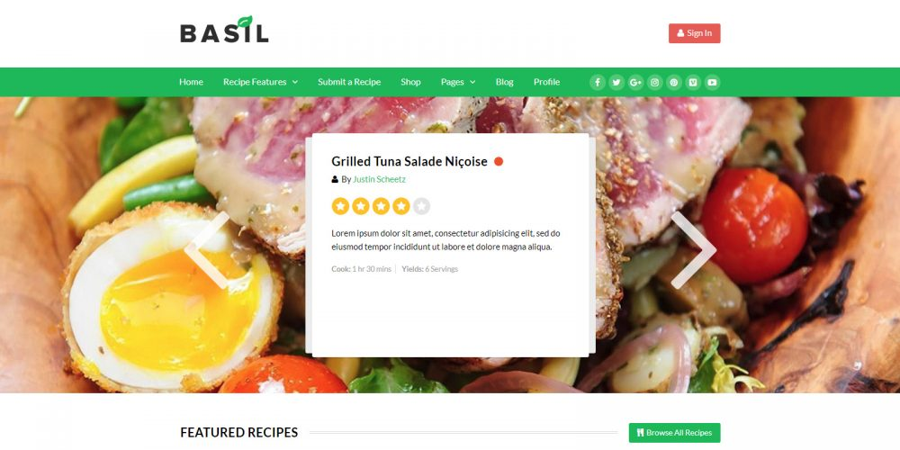 Food Blog, Magazine WordPress themes 2018