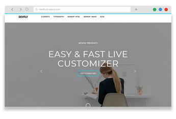 Devfly - free wordpress business theme